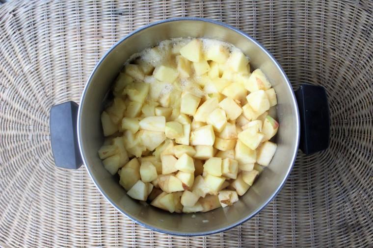 homemade applesauce The Glutn Free Gathering